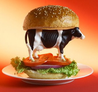 hamburger de vaca